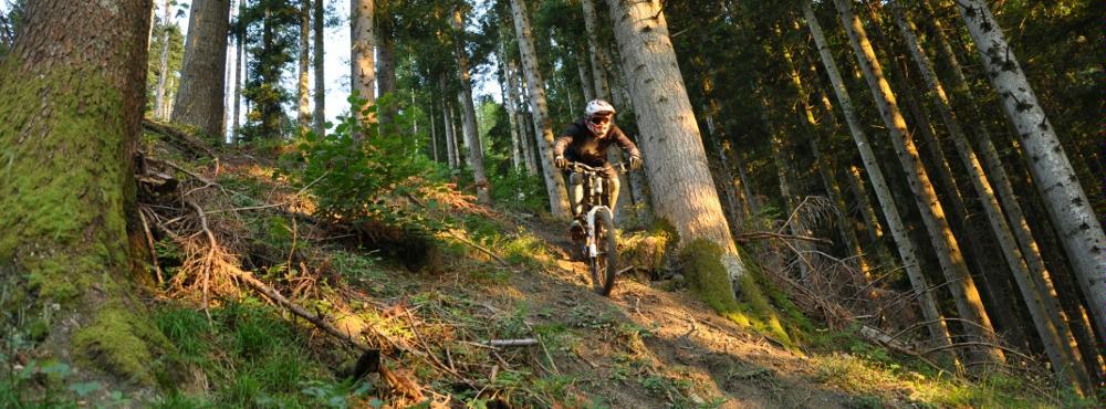 Haldi Downhill © Urbikers