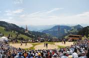 Arena Rigi Schwingen