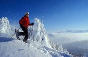 Schneeschuheldorado Rigi