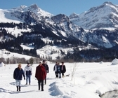 Winterwanderparadies am Lauenensee