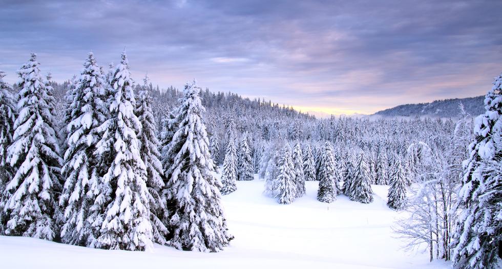 La Givrine en hiver