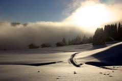 Schneeschuhlaufen Habkern