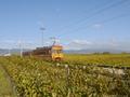 La linea ferrovia Nyon – St-Cergue – La Cure, Nyon