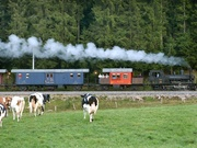 Compagnie du train  vapeur de la Valle de Joux