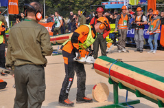2014 World Skills Competitions in Logging