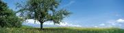 Gepflegte Landschaften, vom Hahnenschrei geweckt werden: Testen Sie Ferien auf dem Land<br>© Studio Patrick Jantet