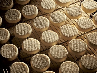 Tomme vaudoise
