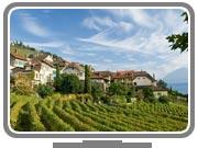 © HP Siffert / Weinweltfoto.ch