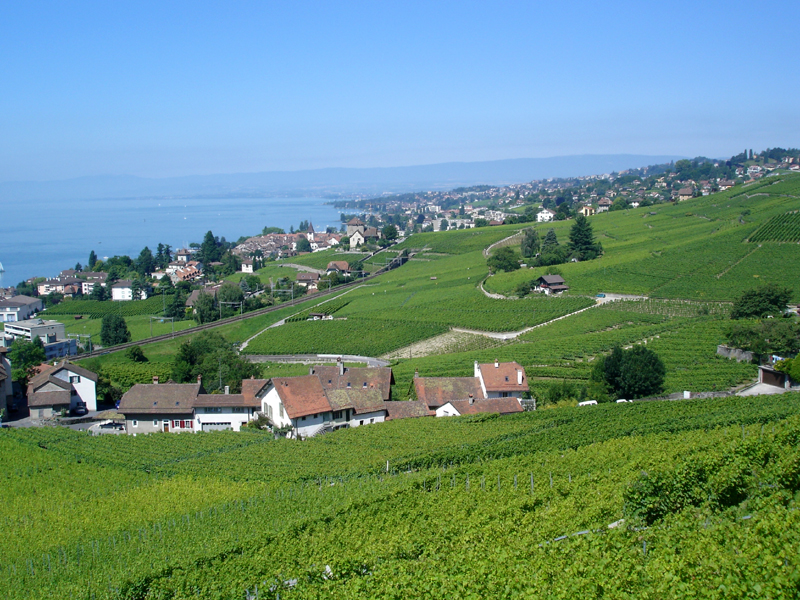 Lutry Switzerland  City new picture : Lutry Switzerland Related Keywords & Suggestions Lutry Switzerland ...