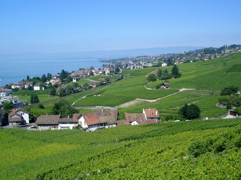 Lutry Switzerland  city photos gallery : Lutry Switzerland Related Keywords & Suggestions Lutry Switzerland ...