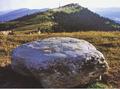 The Peace Stone