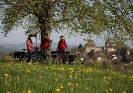 Rast mit Blick auf Schloss Kyburg
