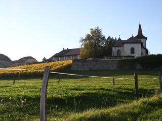 © Morges Région Tourisme
